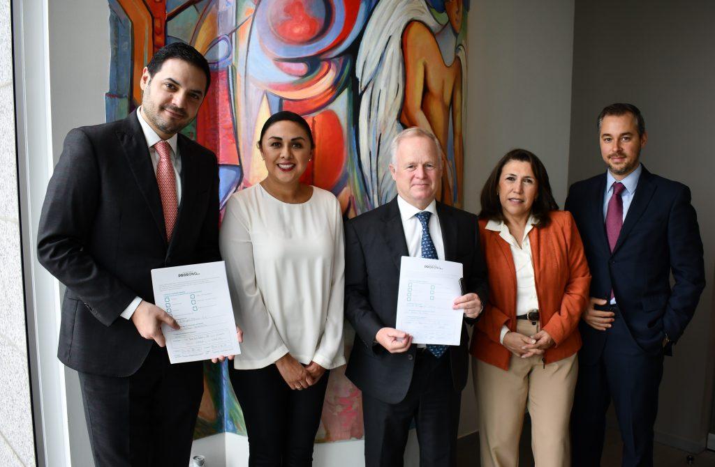 Holland & Knight firma los Estándares Pro Bono México.